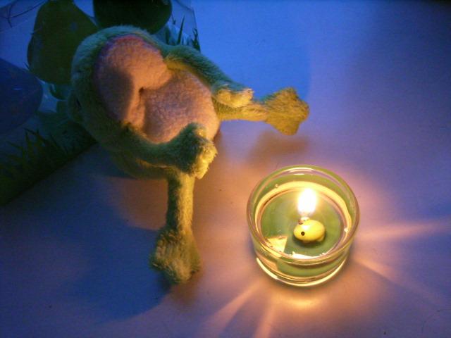 kaeru candle 2
